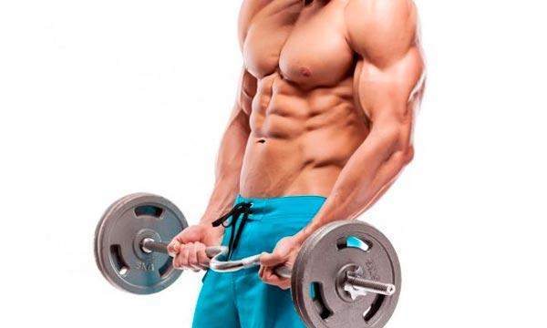 La arginina y su beneficio para el entrenamiento